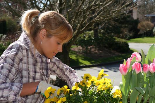женские хобби глазами мужчин - садоводство