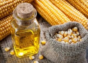 Кукурузное масло: польза, вред, применение, отзывы