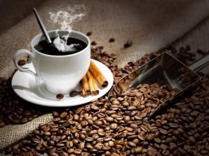 Как выбрать кофемашину для дома: 7 важных деталей