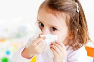 Пылевые клещи: чем опасны и как бороться