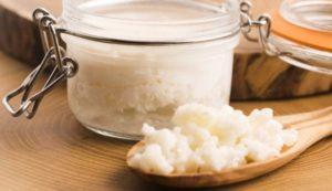 Молочный гриб: полезные свойства и противопоказания