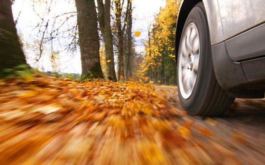 особенности вождения осенью