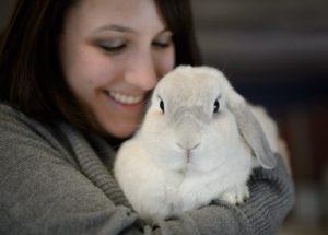 К чему снятся кролики женщине во сне